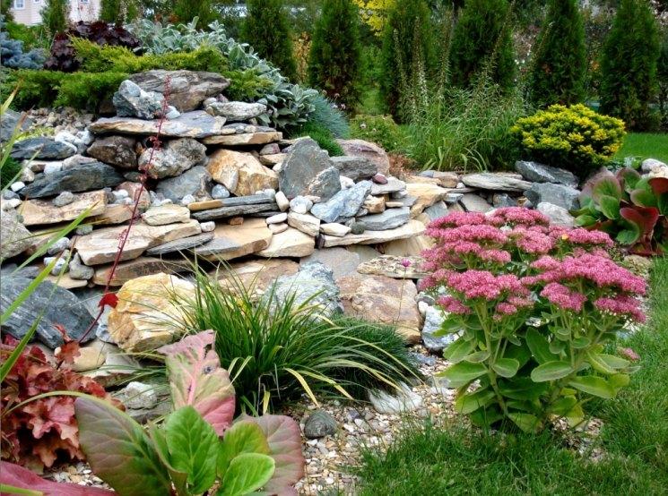 Альпийская горка - классический вариант ландшафтного дизайна, правила и советы по обустройству и подбор растений