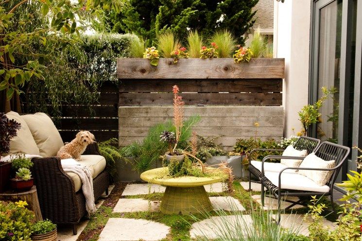 фото дизайна двора небольшого уходе