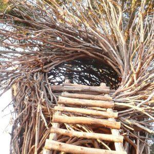 Гнездо из веток — символ домашнего уюта своими руками (фото + видео)