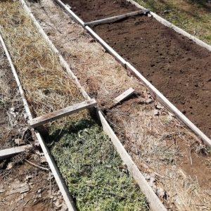 Грядка для огурцов — правила, идеи и советы по правильной подготовке грядки к посадке огурцов