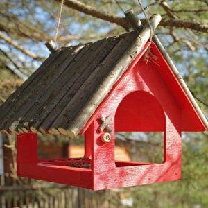 Кормушка для птиц — приятные мелочи, обзор материалов и конструкций для для самостоятельного изготовления
