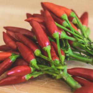 Красный перец — достоинства выращивания жгущего перца на загородном участке (фото + видео)