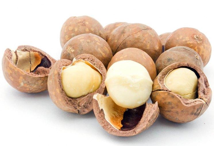 Где и как растет орех макадамия, страна происхождения, плантации