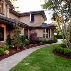 Озеленение участка — основные принципы и правила создания красивого участка своими руками