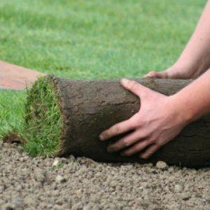 Рулонный газон: инструкция как выбрать лучший + укладка своими руками. Фото готовых решений, видео, схема, планировка + отзывы!