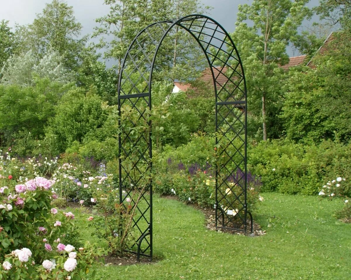 раз полгода кованые садовые арки фото думает, что достоин