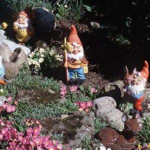 Садовые гномы: популярный и модный житель садовых участков, обзор видов, материалов и мест установки и декорирования