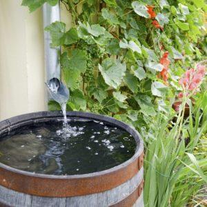Сбор дождевой воды — используем дар небес в хозяйственных нуждах, конструкции и виды