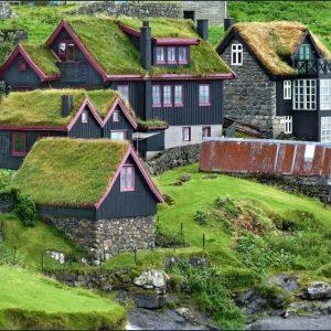 Современная зеленая крыша — современный модный тренд или эстетическая функциональность (фото + видео)