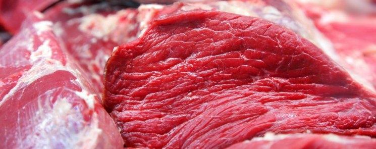 Мясо страуса: описание, состав, правила приготовление и мясные породы страусов (105 фото и видео)