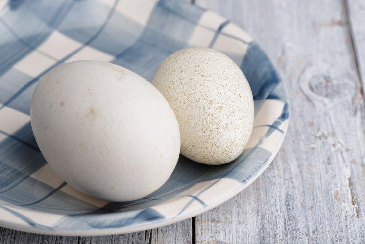 Как приготовить утиные яйца
